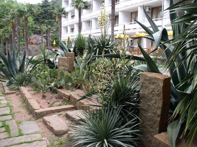 Мексиканский сад
