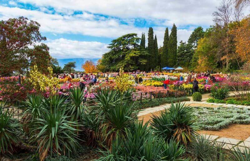 Ноябрь в Никитском ботаническом саду