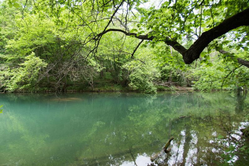 Фото: Черная речка