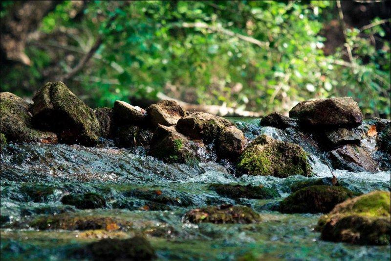 Завараживающие кадры черной реки