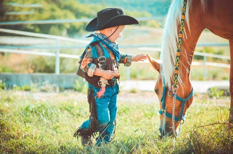 Конные прогулки с детьми