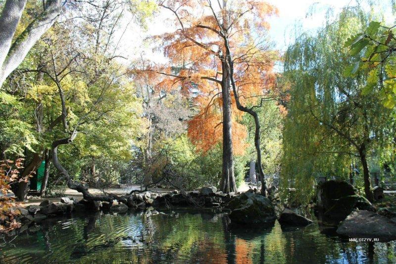 На фото Воронцовский парк в Крыму