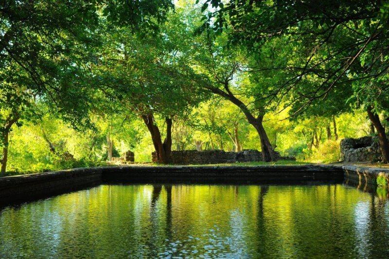 Парк около Максимовой дачи в Севастополе