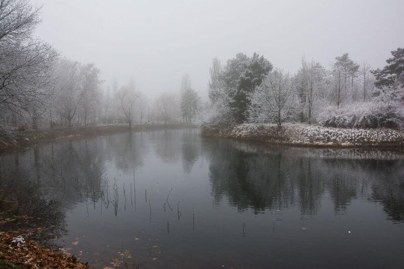 Гагаринский парк зимой - фото