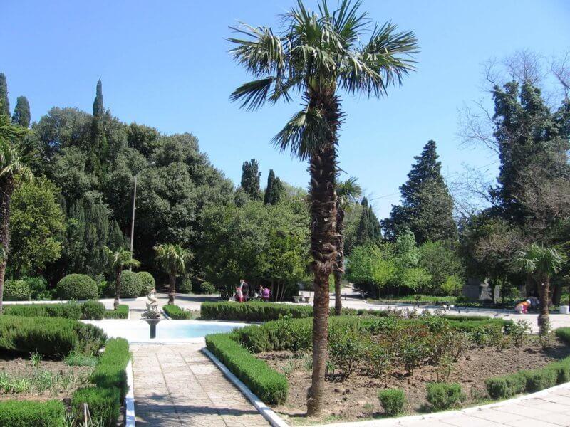 Парк санатория Ясная Поляна -фото