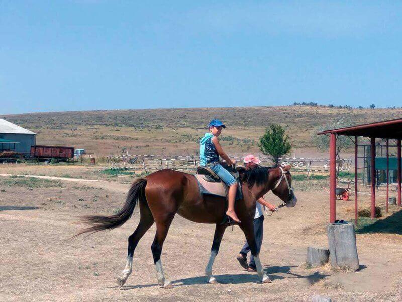 Конные прогулки на страусиной ферме