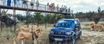 Ссафари парк Тайган