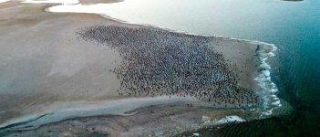На фото Акташское озеро