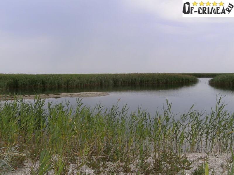Бакальское озеро - фото