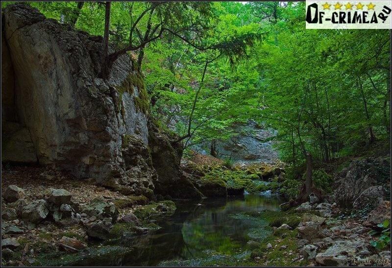 Заводь на горной реке Узунджа вблизи каньона.