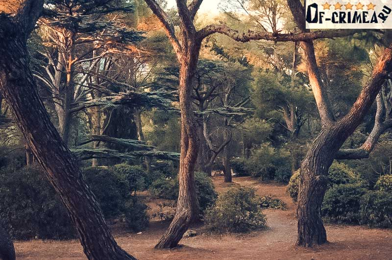 Красоты Форосского парка