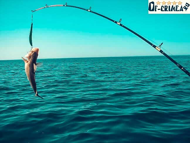Бесплатная рыбалка в Крыму