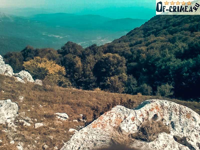 Природа Хапхальского заказника