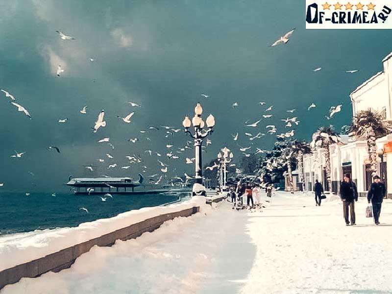 Погода на Новый Год в Крыму
