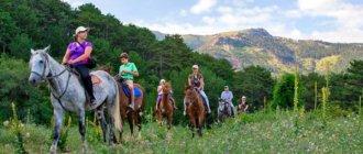 Конные прогулки в Крыму
