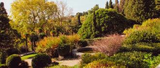 Воронцовский парк в Крыму
