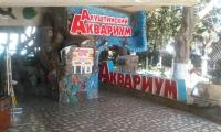 alushtinskiy-akvarium-3