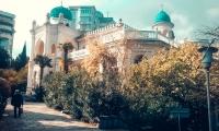 dvorec-emira-buxarskogo