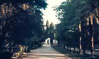 gurzufskij-park-3