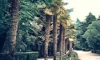 gurzufskij-park